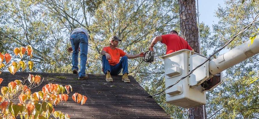 Seven different jurisdictions require a license to be a tree trimmer.