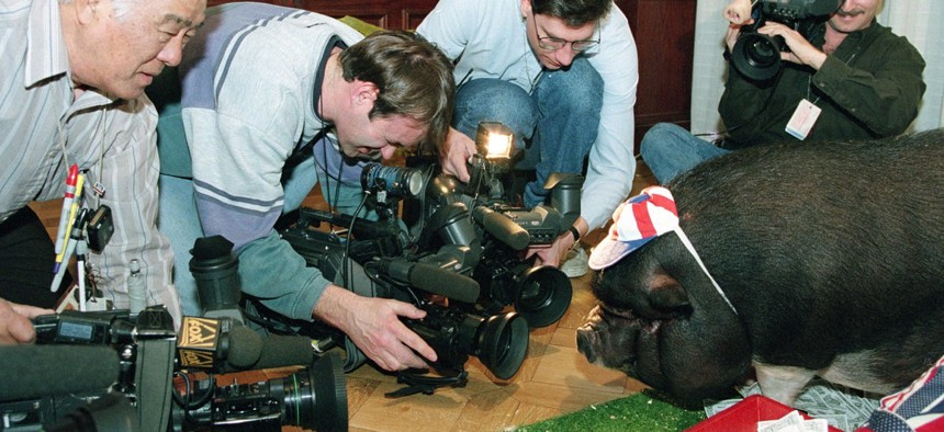 """Photographers gather around """"Porky"""" the pig during a news conference held by the Citizens Against Government Waste in Washington, D.C., Wednesday, Feb. 15, 1995."""