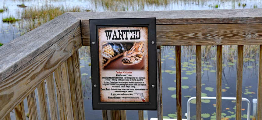 A python bounty sign posted at the in Grassy Waters Natural Area in Palm Beach Gardens, Florida