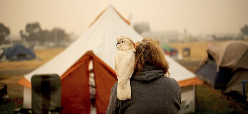 Suzanne Kaksonen, an evacuee of the Camp Fire, and her cockatoo Buddy camp at a makeshift shelter outside a Walmart store in Chico, Calif.