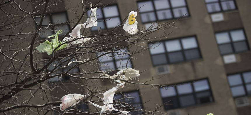 Plastic bags are tangled in the branches of a tree in New York City's East Village neighborhood.