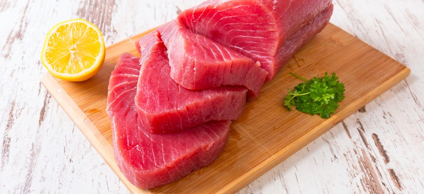 Because of their diet, tuna tend to accumulate mercury in their bodies.