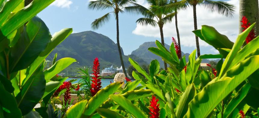 The Kauai Visitors Bureau contributed to airfare to return three of the travelers to the mainland.