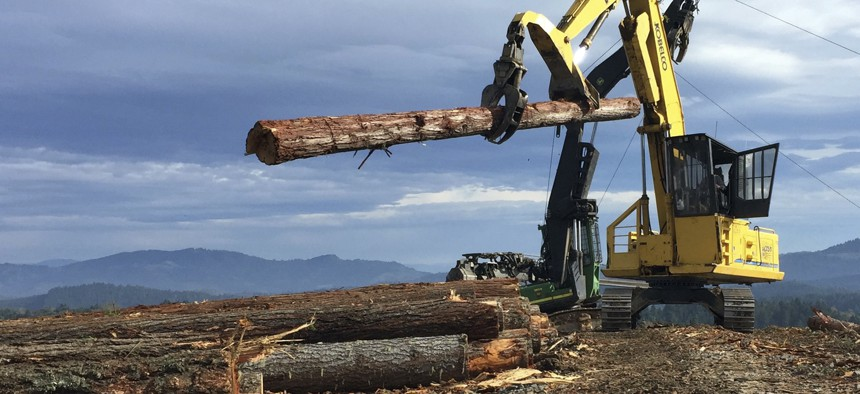 In this Nov. 11, 2016 photo, a logging crew harvests new timber on private land.