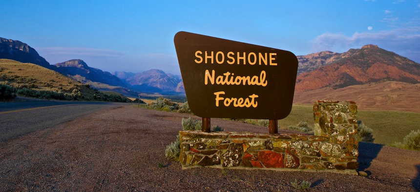 Shoshone National Forest in Wyoming