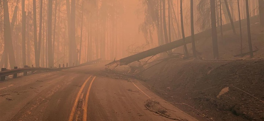 Fire damage along Oregon Route 138, near Susan Creek.