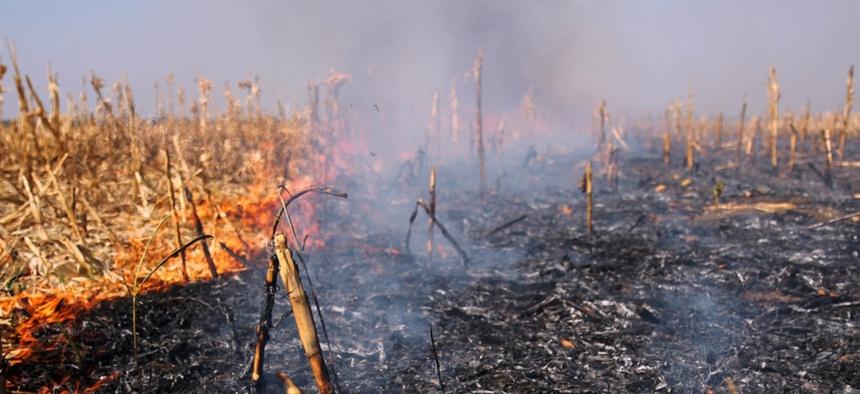 Oregon fires destroyed several marijuana businesses.