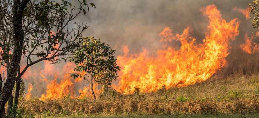 Assuming both climate change and poor environmental management share culpability for the blazes, it might seem reasonable to ask: Which deserves more blame?