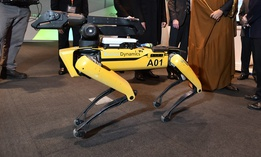 "A model of the ""SpotMini"" robot dog by Boston Dynamics seen at an event in 2018."